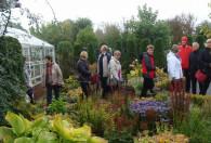 grupa ludzi chodząca wsród roślinności po ogrodach kapias